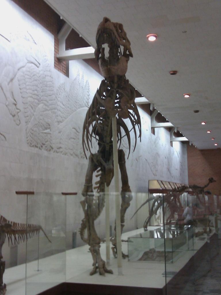 Музей москва московская область