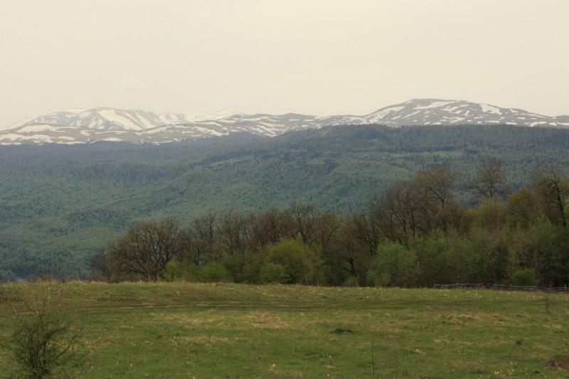 фото мезмай краснодарский край