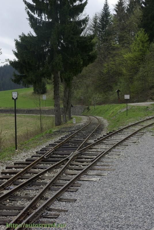 Лесная железная дорога