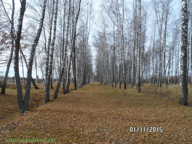 шлюхи киров калужская область