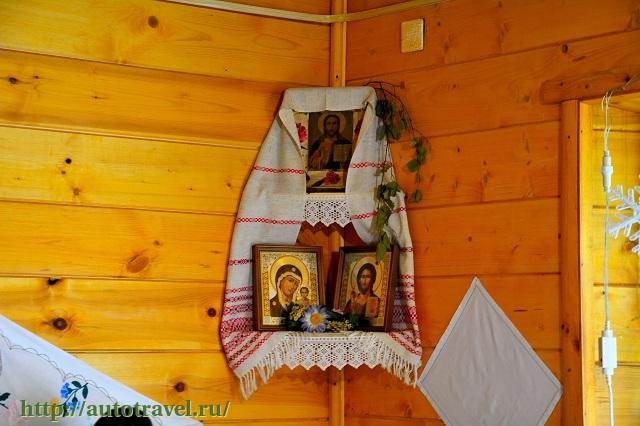 Фотография Беловежская пуща (Каменец (Беларусь))