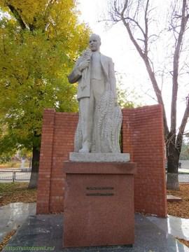 Саратов (Саратовская область): Достопримечательность Памятник Н.И. Вавилову