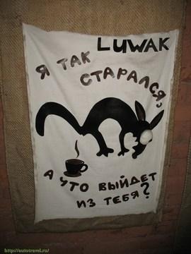 Санкт-Петербург (Ленинградская область): Достопримечательность Музей кофе