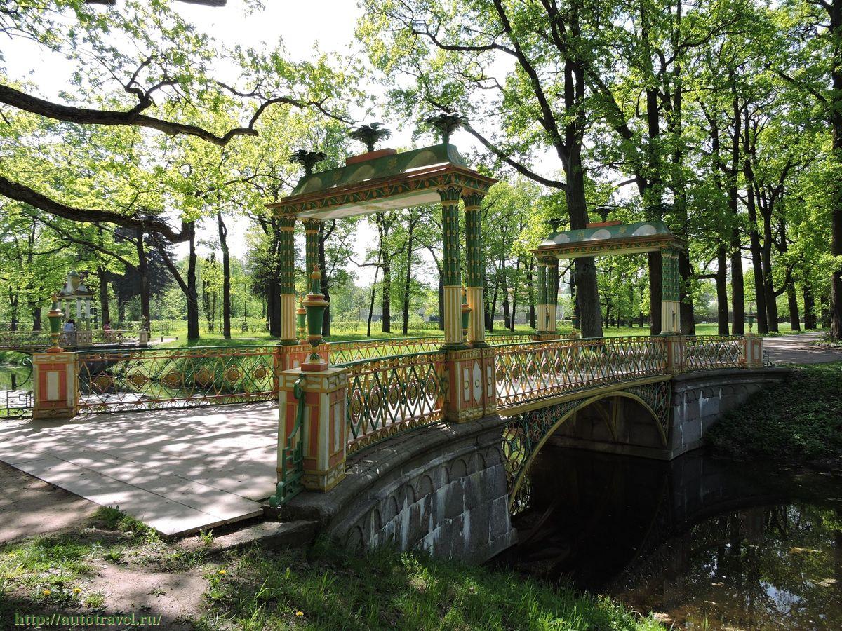 Пушкин ленинградская область фотографии этом разделе