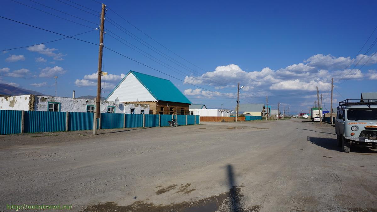 кош агач полная информация о селе фото длинной волнистой